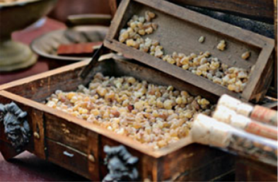 Mur dan frankincense (courtesy: shutterstock)