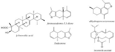 Senyawa kimia dari kemenyan